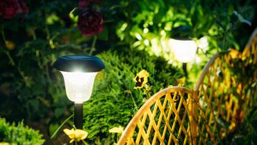 Landscape lighting on garden